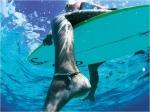 surf_board leg